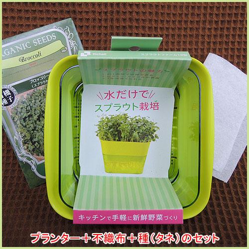 スプラウト栽培セットを販売