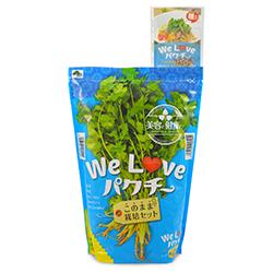美容と健康に「We Love パクチー このまま栽培セット」を販売【花育通販】