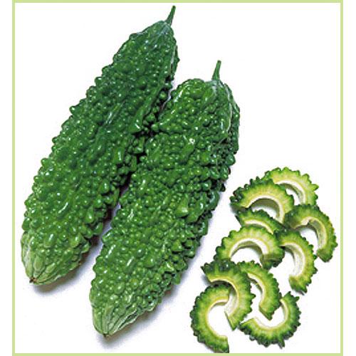 ゴーヤー(苦瓜・ニガウリ・レイシ)の苗など家庭菜園野菜の販売店