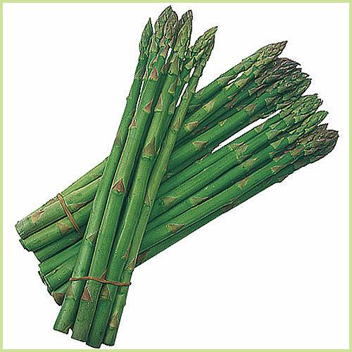 アスパラ(アスパラガス)など家庭菜園野菜の苗を販売