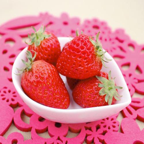 苺(イチゴ)ドルチェベリーの苗を販売【花育通販】