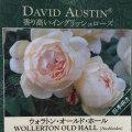 薔薇(バラ)苗木の販売店【花育通販】ウォラトン・オールド・ホール