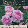 薔薇(バラ)苗木の販売店【花育通販】ジ・エンシェント・マリナー