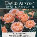 薔薇(バラ)苗木の販売店【花育通販】ロアルド・ダール