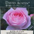 薔薇(バラ)苗木の販売店【花育通販】セプタード・アイル