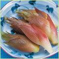 山菜・茗荷(ミョウガ・みょうが)の苗を販売
