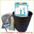 花の苗(多年草・宿根草)クレマチスの栽培セットを販売