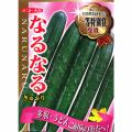 家庭菜園野菜苗の販売店【花育通販】キュウリ(きゅうり)の苗を販売