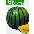 家庭菜園野菜苗の販売店【花育通販】西瓜(すいか・スイカ)の苗を販売