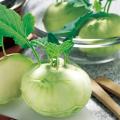 コールラビ「グランデューク」の苗を販売【花育通販】野菜苗の販売店
