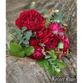 薔薇(バラ)苗木の販売店【花育通販】ディープ・ボルドー