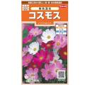 花種・コスモスの種販売店【花育通販】