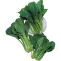 野菜苗・種の販売店「花育通販」べんり菜の種を販売