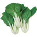 野菜種の販売店【花育通販】パクチョイのタネ