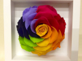 愛知県豊橋市の花屋はなふじつつじが丘店・プリザーブドフラワー・記念日・新築祝・レインボーローズ・配達