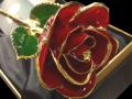 豊橋の花屋はなふじつつじが丘店|究極のフラワーギフト ゴールドローズ・24金カラーローズ・赤バラ・誕生日・結婚・配達