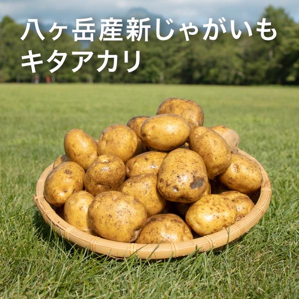 八ケ岳中央農業実践大学校