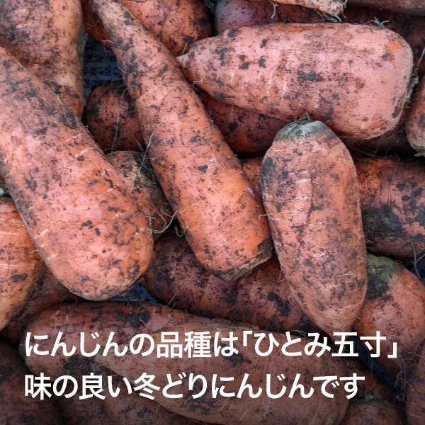 DORO FARM