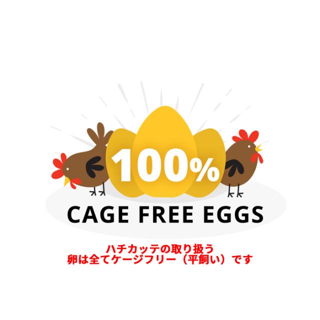100%平飼い卵