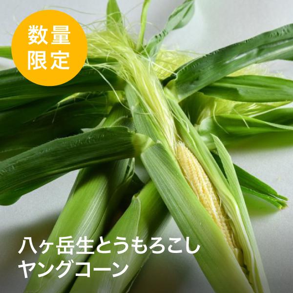 HAMARA FARM