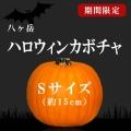 halloween 八ヶ岳 ハロウィン 2017 20