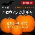 halloween 八ヶ岳 ハロウィン 2017 22
