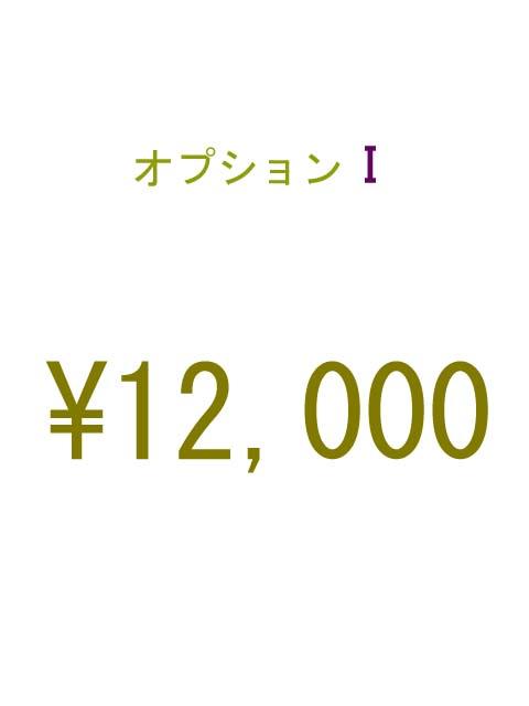 オプションI 12000