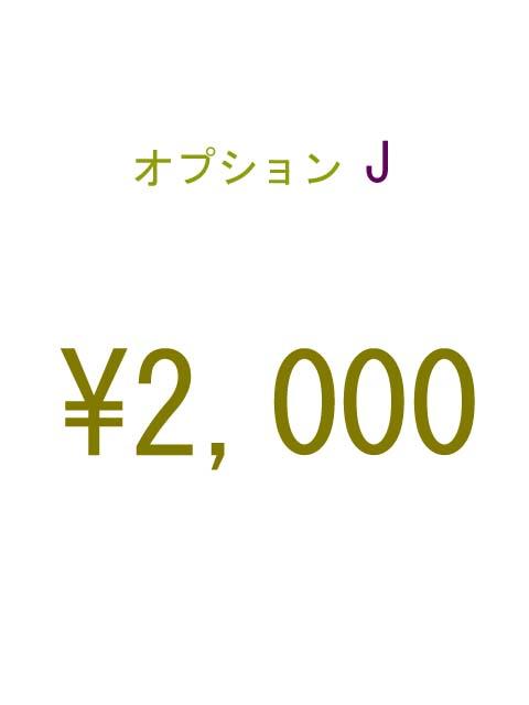 オプションJ 2000