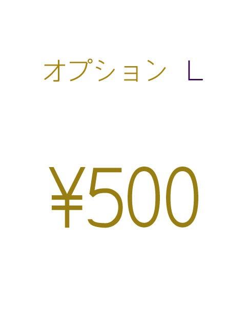 オプションL-500