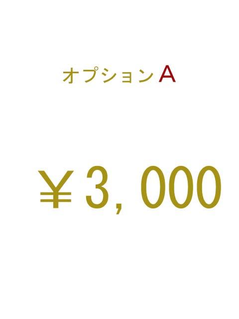 オプションA 3000