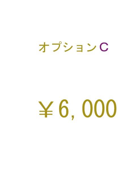 オプションC 6000