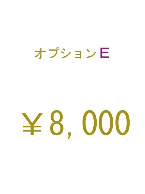 オプションE 8000