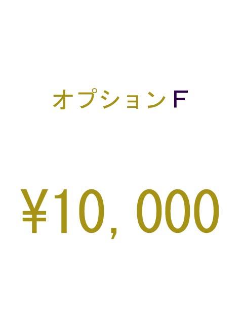 オプションF 10000