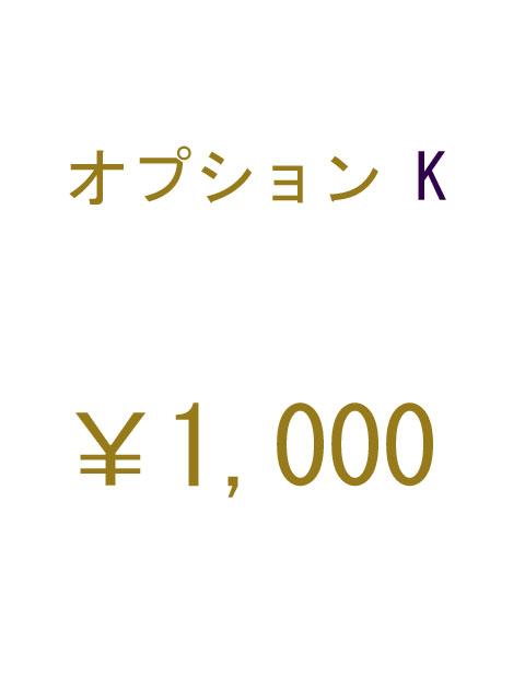 オプションK 1000