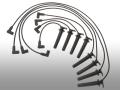 プラグコードワイヤリングSET/ACデルコ製 セビル