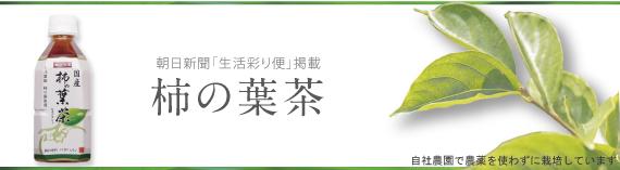 朝日新聞「生活彩り便」掲載 国産 柿の葉茶