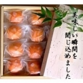 冷やし柿 12個入 (冷凍便)(K9135)