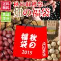 秋の収穫祭 畑の福袋 【数量限定】【送料無料】 発送は10月20日頃より