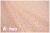 LECIEN Retro 30's Child Smile サーカス ピンク 35064-20 (約110cm幅×50cm)