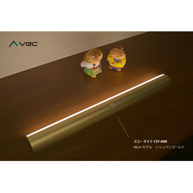 cocoLight40M_g_wh1250_08.png