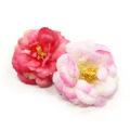 DOGO(ドゴ)EasyBOW Flower 4 イージーボウ フラワー