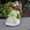 Doggie Design(ドギーデザイン)Emily Yellow Floral and Lace Dog Dress