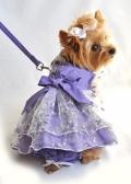 Lavender Garden Party Dog Dress Set ラベンダー ガーデン パーティ ドレス セット