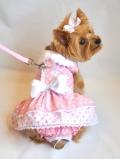 Doggie Design(ドギーデザイン)Pink Polka Dot and Lace Dog Dress Set ピンク ポルカドット レース ドレス セット