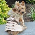 Doggie Design(ドギーデザイン)Wool Fur Trimmed Dog Harness Coat Camel