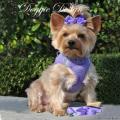 Doggie Design(ドギーデザイン)American River Ultra Harness Paisley Purple アメリカン リバー ウルトラ ハーネス パープル