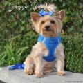 Doggie Design(ドギーデザイン)American River Ultra Harness Royal Blue アメリカン リバー ウルトラ ハーネス ロイヤルブルー