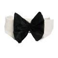 Doggie Design(ドギーデザイン)Black Satin Dog Bow Tie and Collar ブラック サテン ボウタイ アクセサリー