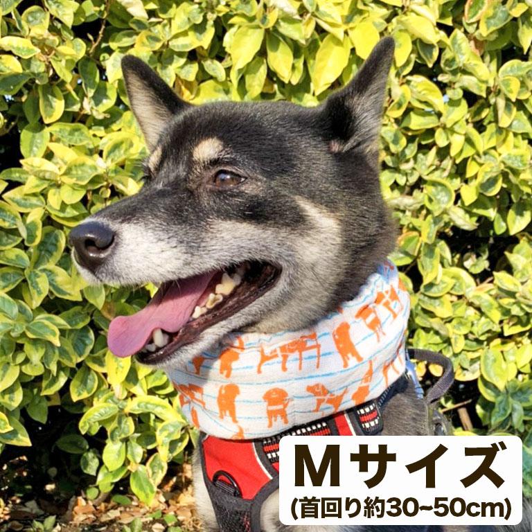 盲導犬チャリティーひんやりスヌード オレンジMサイズ