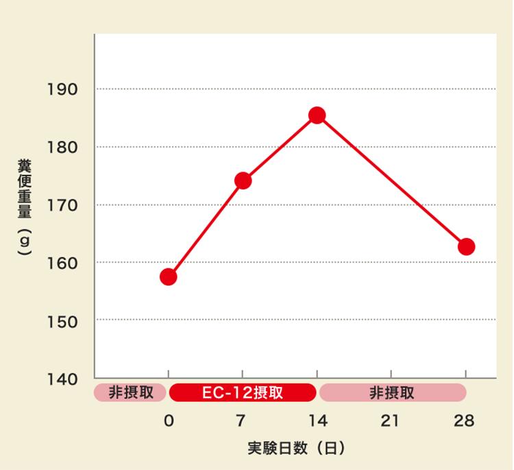 糞便重量:実験日数の比率